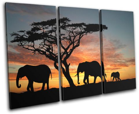 Elephants African Sunset Animals - 13-2009(00B)-TR32-LO